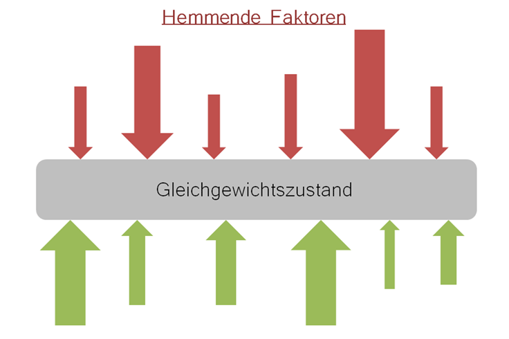 Kraftfeldanalyse im Change Prozess
